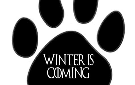 Olsavsky- Winter is coming