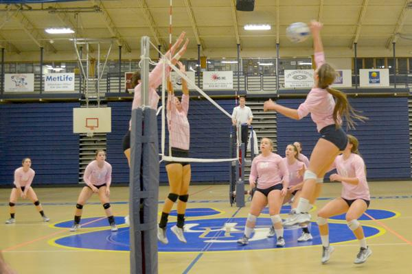 Lady Cats sparked by winning streak
