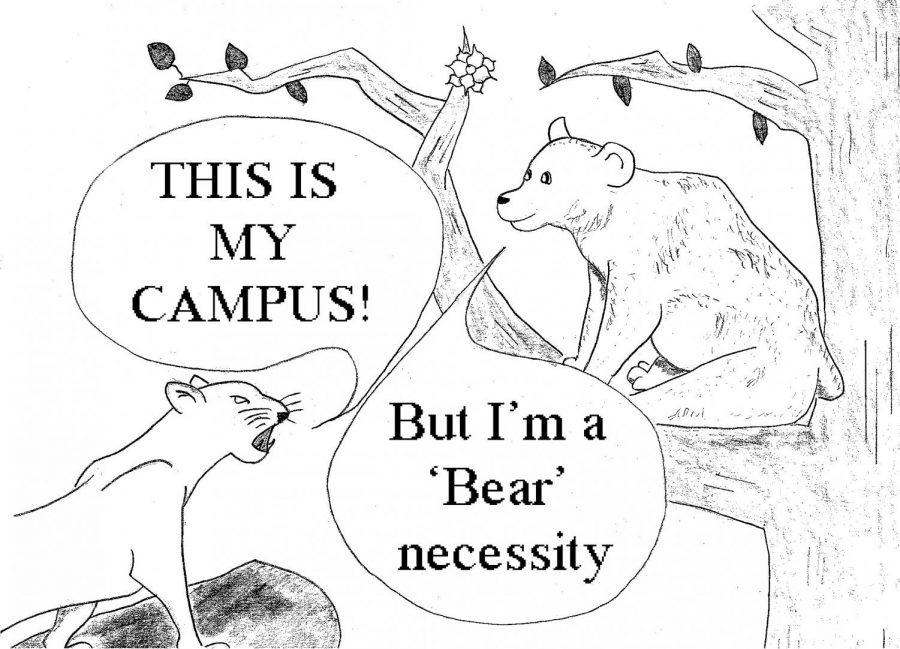 Mt. Cat vs. Bear Cartoon copy