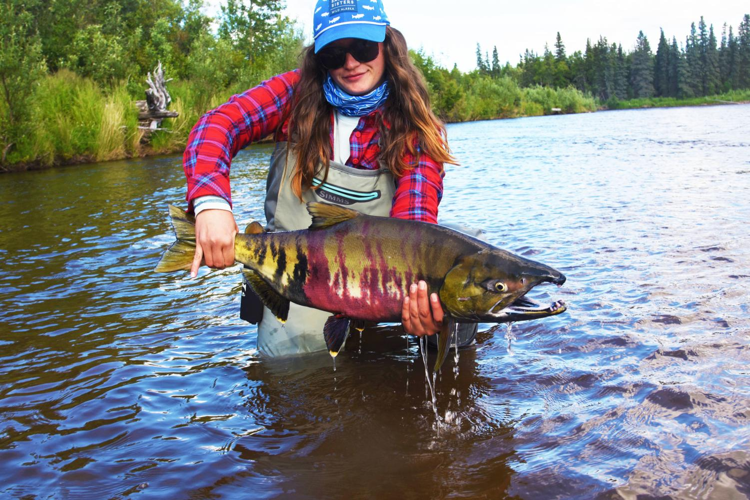 Senior education and biology student Kylie Hogan holds up a Chum Salmon. She visited Bristol Bay, Alaksa over the summer to learn about a toxic mine and go fishing. |